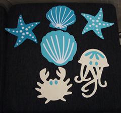 animaux marins